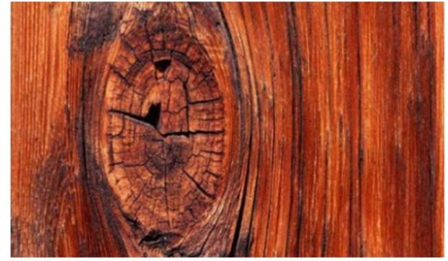 چوب در ساخت پارکت چوبی گردو